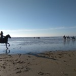 Krásu francúzskeho pobrežia zaznamenala Kika